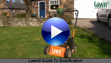Lawn3 Guide To Scarification