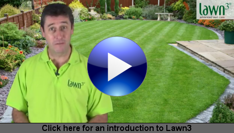 Click here for an introduction to Lawn3